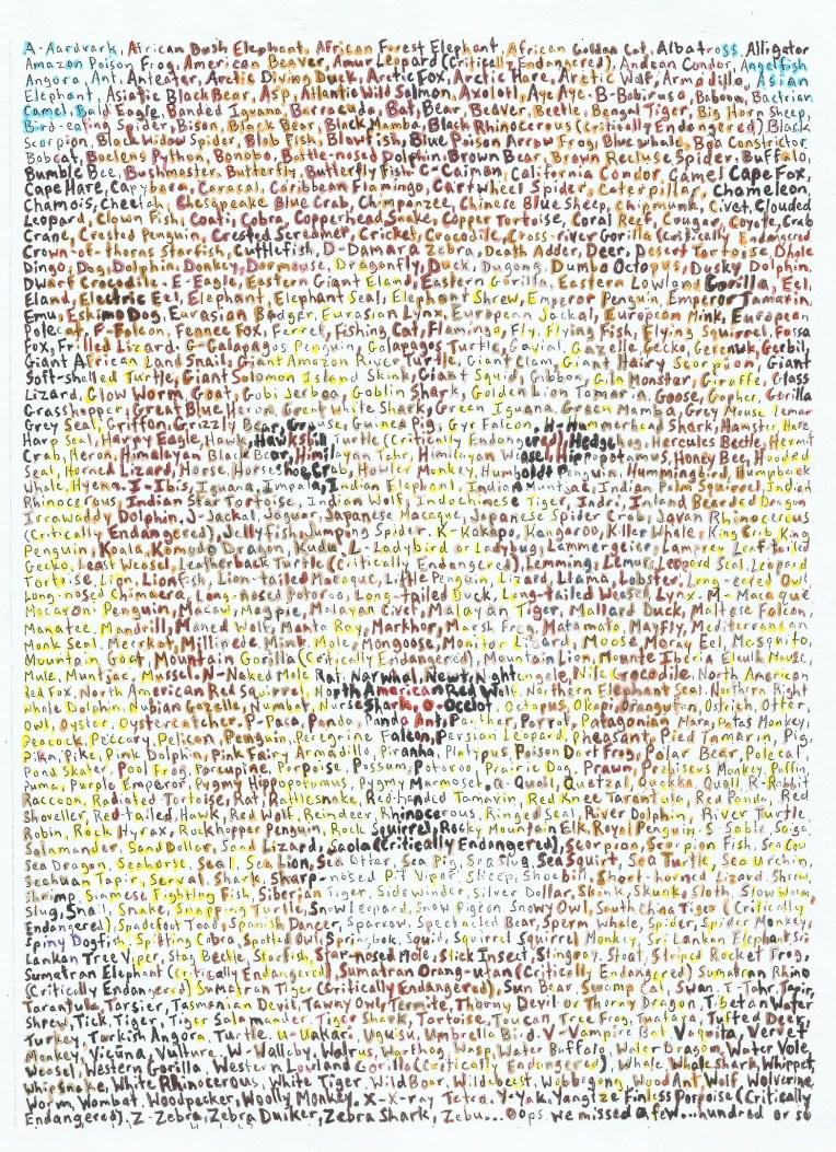 new lion